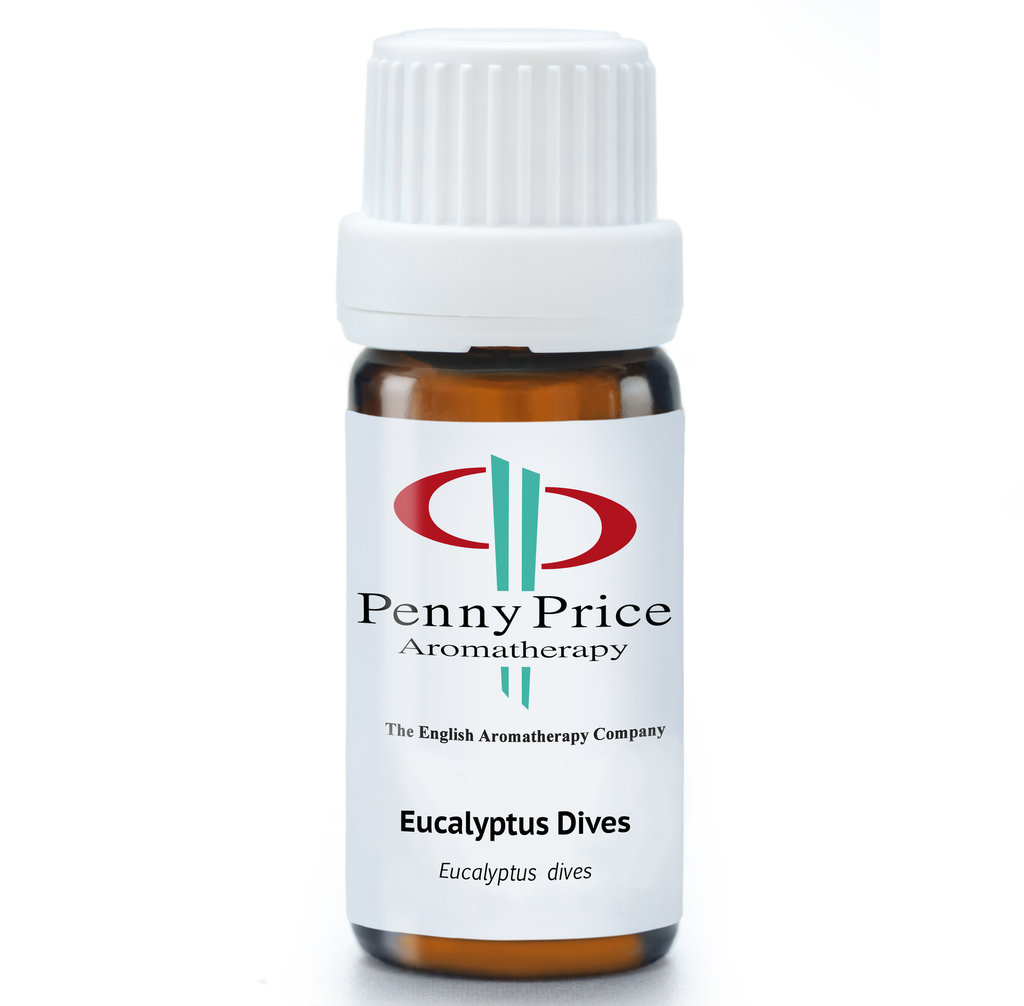 Eucalyptus Dives - EO 10ML
